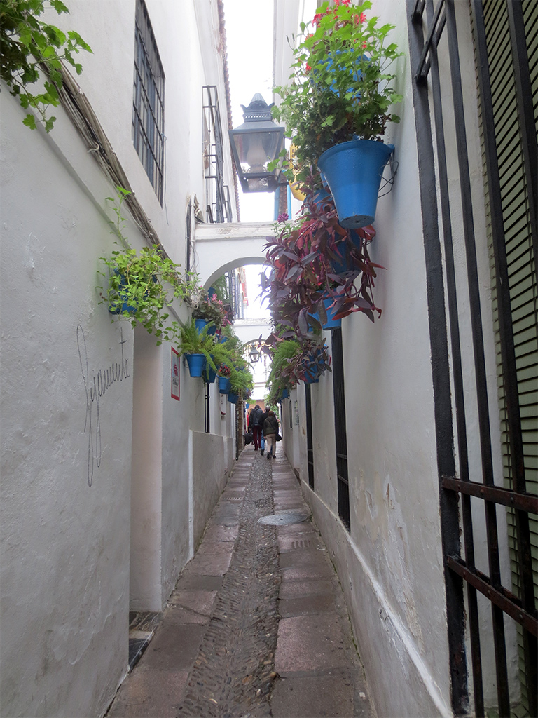 Pretty Street #4