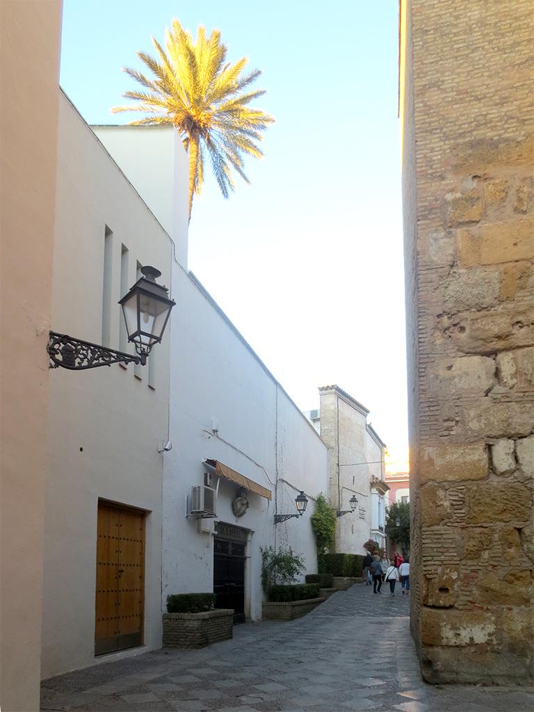A Santa Cruz Street